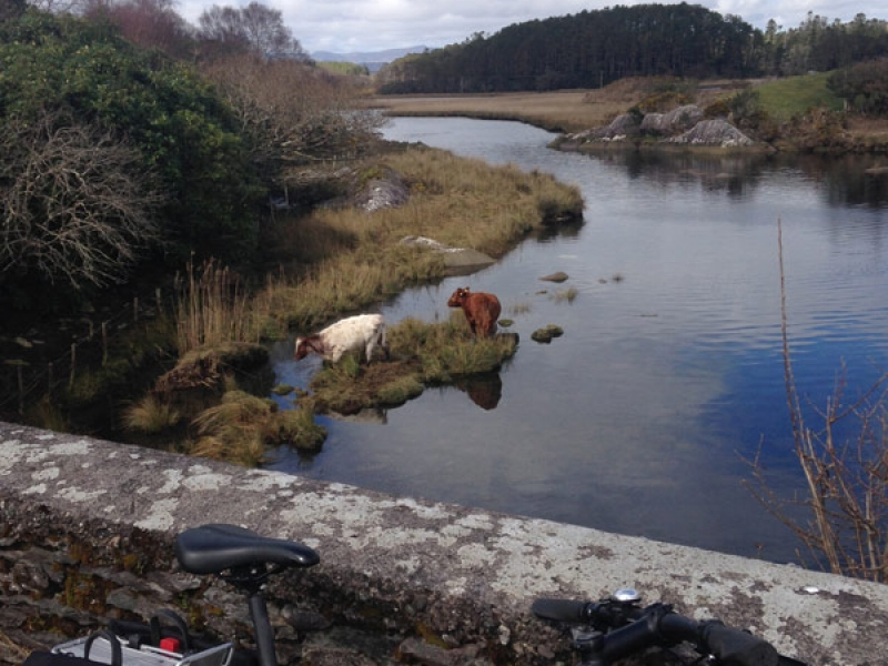 Kenmare and Beara Cycle Tour